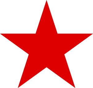 Texas Judges Training Red Star Logo
